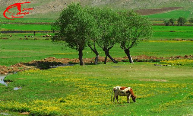 همه چیز درباره استان چهارمحال و بختیاری