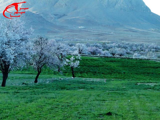 شهرستان سامان در استان چهارمحال و بختیاری